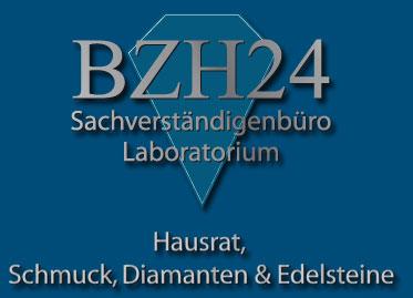 Logo BZH24.de
